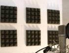 专业录音网,叫卖录音,专题配音,视频处理,彩铃制作