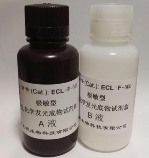 极敏型 ECL化学发光底物试剂盒 低飞克级灵敏度 信号持久