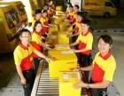 高阳DHL国际快递DHL国际货运门到门服务