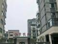 贵池紫悦府 4室2厅2卫 123㎡毛坯房价格仅售100万