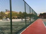 山东生产厂家直销安装运动场围网 体育场围网 学校球场围网市场