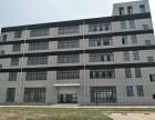 松江工业区一楼1300平全新厂房出租 可环评 形象好