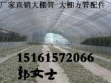 贵州遵义绥阳县西瓜大棚钢管蔬菜大棚 防风农用大棚配件