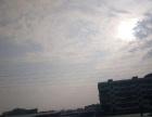 白湖亭 77路总站、江边新苑 土地2000平米