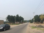 大新庄镇大裴庄村 铸件厂2000平米