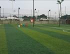 长沙7人制,5人制,11人制足球场预订