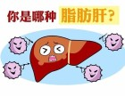 廊坊市脂肪肝如何有效预防和治疗,牡蛎枸杞养生茶效果怎么样