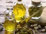 如何在较短的时间里进口橄榄油