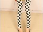 厂家直销2014新款 黑白大波点牛奶丝九分裤子 欧美时尚打底裤