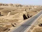 新疆旅游包车 租车 自驾游 专业导游转行租车公司