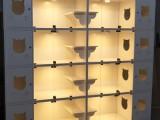 猫咪别墅笼猫咪柜笼防飞毛柜笼猫窝猫屋四层展示笼猫舍柜笼繁殖笼