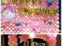 海口私人订制生日派对布置气球装饰,魔术师杂耍小丑