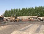 小九号村有700平米土地出租价格面议 有钢板房和地秤
