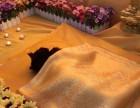 成都宠物火葬场 宠物火葬服务哪家好?