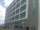 同安禹州大学城黄金工业园标准厂房1500平出租