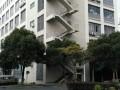松江工业园直售 1039平 104可环评 紧邻高速