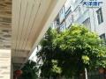 自建房 写字楼 幼儿园 地基100方 二楼至五楼136方
