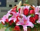 红玫瑰百合小花篮同城速递预定父母长辈看望病人送花