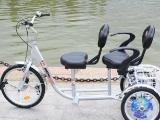 伟乐保健老年老人自行车 代步车 双人三轮