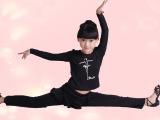 儿童舞蹈服装练功服女童芭蕾舞裙女幼儿秋冬长袖女童考级舞蹈服