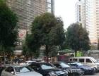 金湖广场水晶城40平临街旺铺转让,无行业限制!