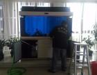 深圳专业 水族服务 清洗鱼缸 鱼缸定做