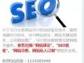 成都seo 提供SEO优化和网站优化方案