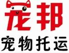 湖北荆州宠物托运宠邦托运宠物