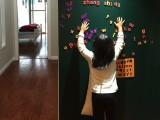 广州magwall定制无尘书写磁性绿板墙贴