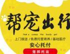 湘潭宠物托运上门接宠全国往返专业安全保障