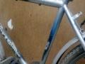 低价出售自行车没有任何毛病