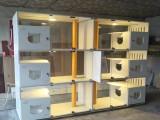 貓籠子貓別墅籠展示籠寄養籠大型貓舍籠子定制尺寸豪華柜籠貓柜籠