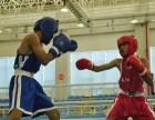 省第十六届运动会拳击比赛举行 西北武术院七人参赛均获奖