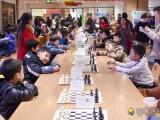鲁能星城国际象棋培训班,专业国际象棋教学机构
