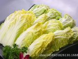产地大量批发有机无公害绿色蔬菜 种植基地直销新鲜天然娃娃菜