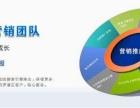 湖南株洲网络推广外包服务公司经营范围公司