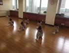 西城区少儿舞蹈培训 地坛附近哪里有少儿舞蹈培训