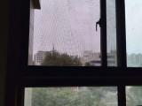 紫荆山路 1室 1厅 48平米 LOFT 整租