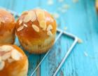 南阳专业西点烘焙 面包烘焙培训学校