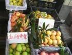 临安城西菜场87-6 水果店转让
