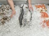 安阳食用颗粒冰批发配送,食用冰粒批发配送公司