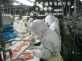 正规出国劳务,瑞士新项目,华人急招