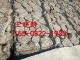 华神护坡高尔凡绿滨垫生产厂家/绿滨垫最新价格