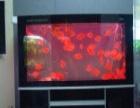 宿州市区鱼缸护理
