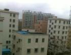 西乡固戍整栋公寓出租,或者几十套不可做二房东,有意向可联系,