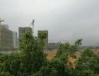 柳北 二桥头 厂房 3200平米