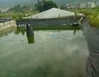 宁德市霞浦县台江村 虾养养殖基地