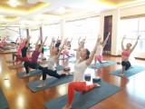 五元素瑜伽館周年慶活動優惠中