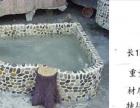 南昌假山水池设计施工