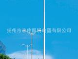 户外道路照明灯低价销售 大功率户外景观灯 节能道路景观灯 6米